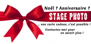 carte_cadeau_stage_photo.jpg